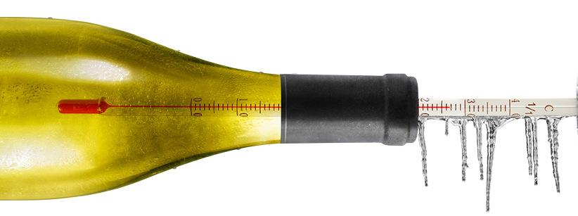 temperatura ideal vinho