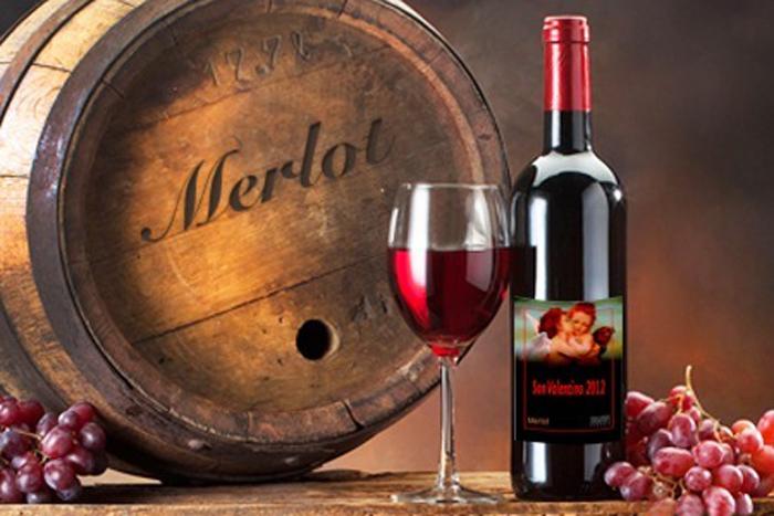 vinho merlot combina com